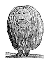 iroquois creation story david cusick
